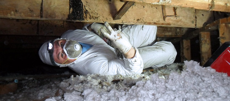 Checking insulation